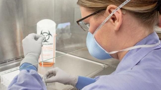 В Украине нет штаммов вируса COVID-19 из Британии, ЮАР и Бразилии