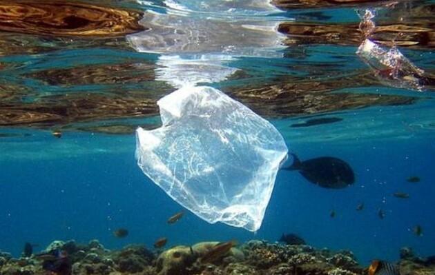 Ученые создали пластик из рыбьего жира