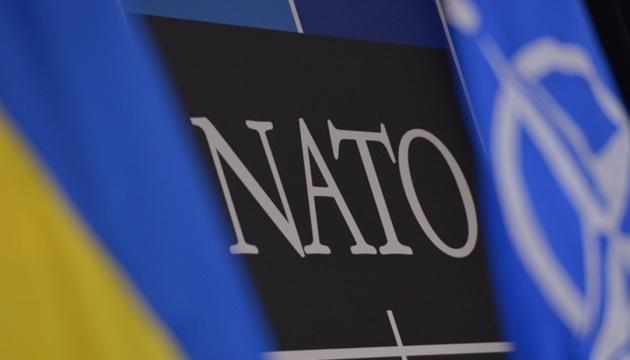 Белый дом поддерживает вступление Украины в НАТО