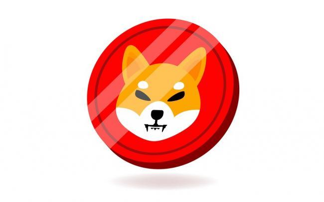 В США два брата вложились в мемную криптовалюту Shiba Inu coin. Теперь они миллионеры