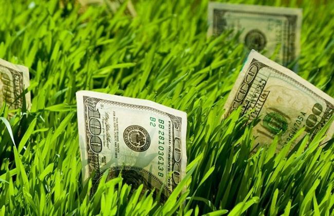 Запуск рынка земли: Шмыгаль анонсировал рост цен минимум в два раза