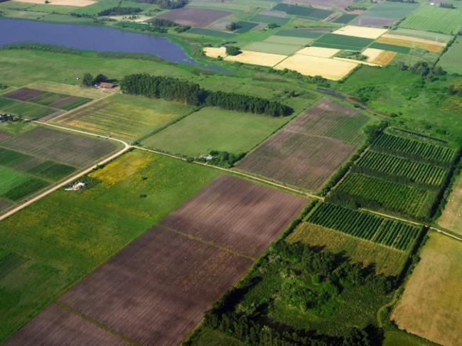 В Украине завершилось формирование правовой базы для запуска рынка земли