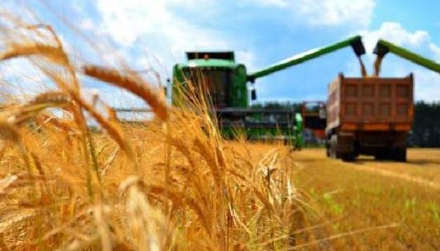 Украина собрала первый миллион тонн зерна нового урожая