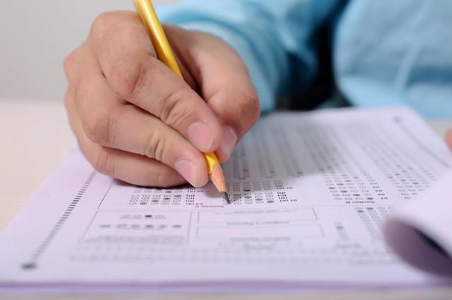 """""""Чиновники справились"""". В нацкомиссии назвали процент не сдавших экзамен на знание украинского языка"""